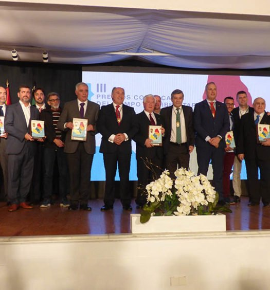 III Premios Comarcales