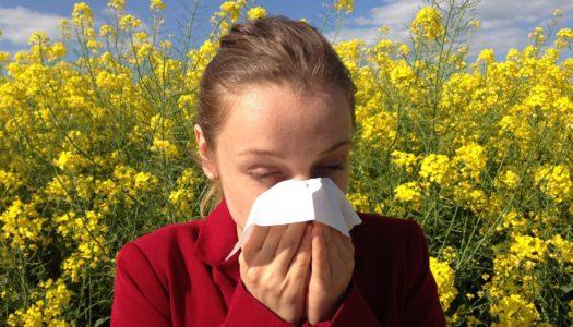 El Hospital Quirónsalud aconseja sobre las alergias primaverales