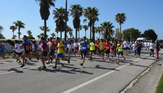 Más de trescientos escolares, en la XV Carrera Popular del IES Sierra Almenara