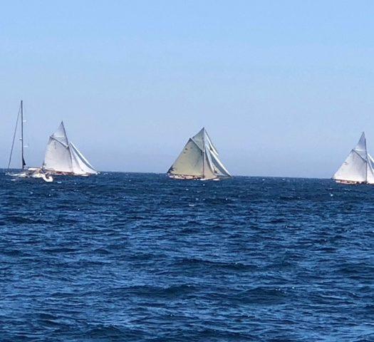 Marina Classic Week