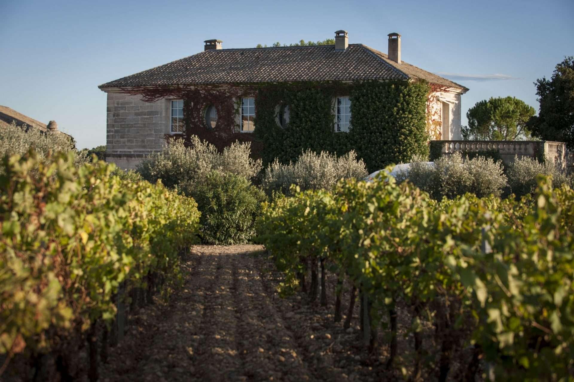 http://tienda.vinopolis.es/es/