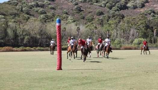Sotogrande acoge la Copa Petiseros de Polo 2020