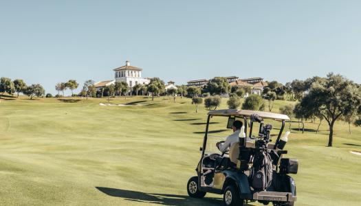Golf: ¿Cómo y cuándo marcar la posición de la bola?