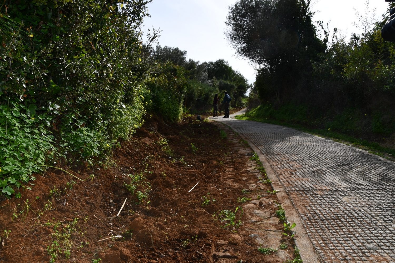 Cañada Real de Guadiaro