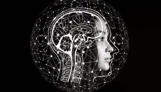 Mediación: distorsiones cognitivas, distorsiones conflictivas