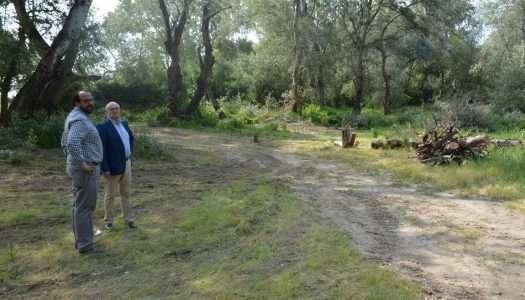Nueva zona de recreo para San Enrique, en marcha