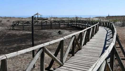 Las pasarelas de la Laguna de Torreguadiaro, pendientes de reparación