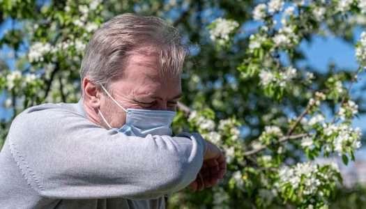 Quirónsalud alerta de una primavera intensa para los alérgicos a pesar de la mascarilla